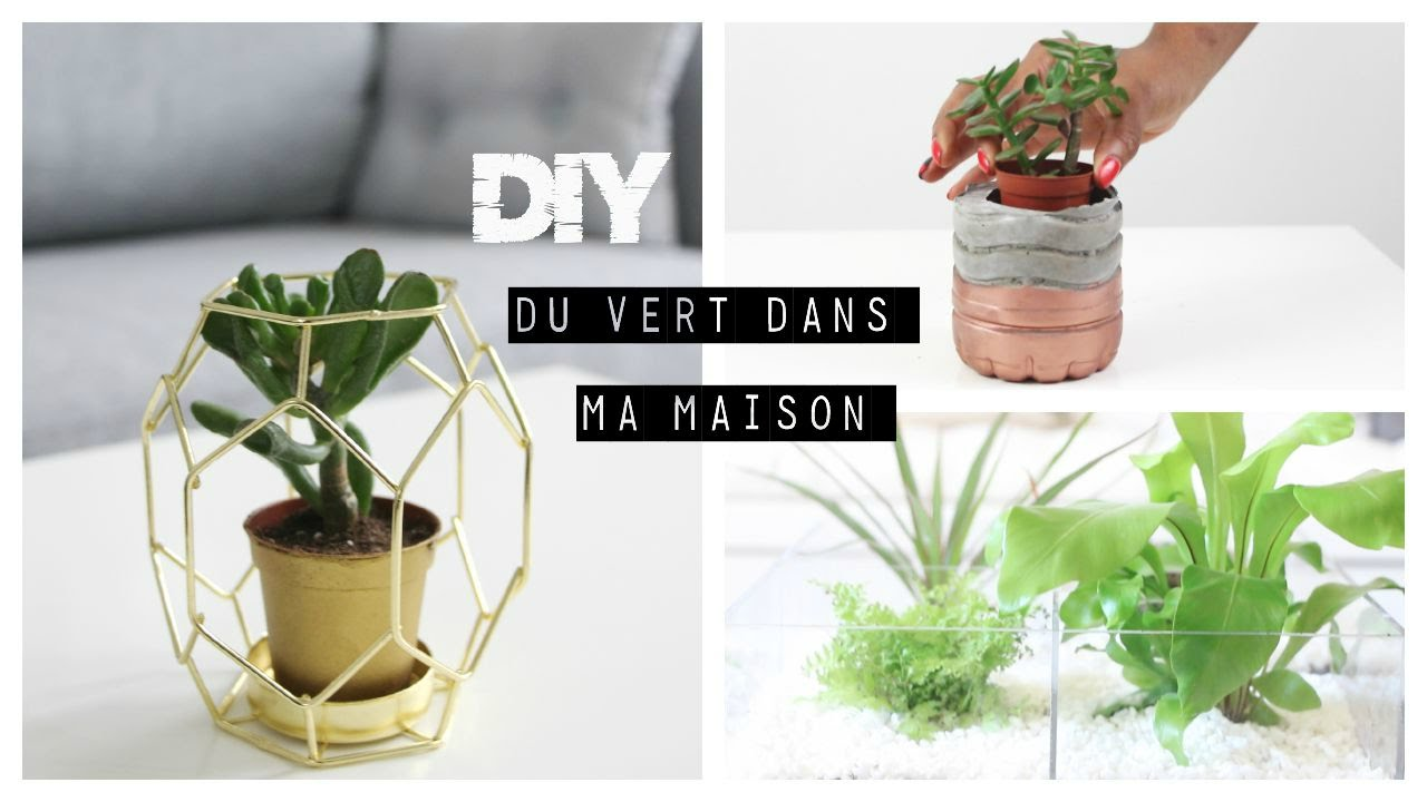 diy d co pot en ciment terrarium and more youtube. Black Bedroom Furniture Sets. Home Design Ideas