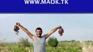 Arsen Petrosov - Tashkent   ( Арсен Петросов - Ташкент  )
