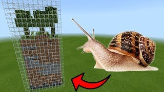 How To Make a SNAIL Farm in Minecraft PE