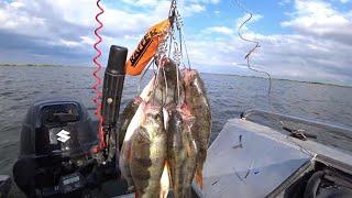 Рыбалка на Веселовском водохранилище Жадный окунь Сентябрь 2021 Одинокий репортаж с воды
