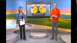 globo rural 30 08 2015 parte 03 armadilha para abelha sem ferro