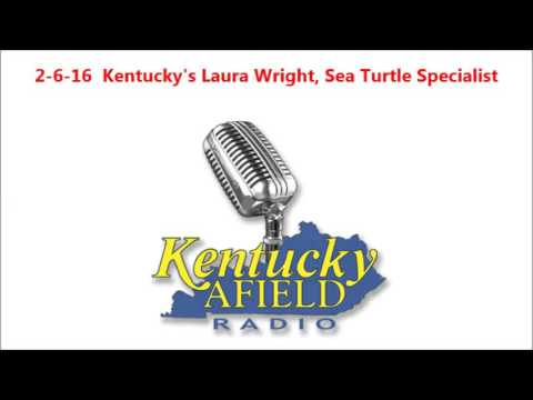 2-6-16 Kentucky's Laura Wright, Sea Turtle Specialist
