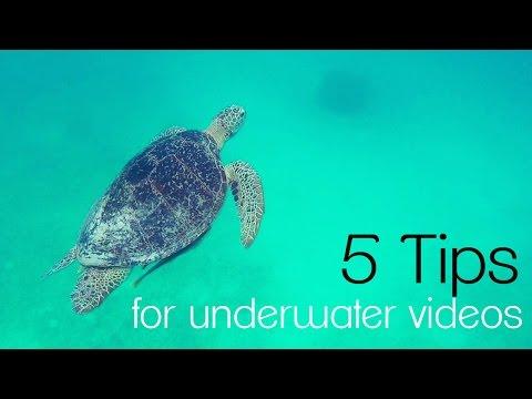 5 Tips For Underwater Videos | Video DSLR Tutorial GoPro 3+