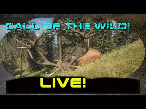 RED DEER Live Stream!!  THEHUNTER 2017