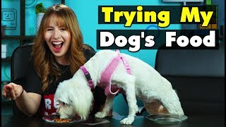 Dog Owners Try Their Dog's Food For The First Time | People Vs. Food
