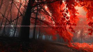 Chillout mix: Autumn (Various Artists)