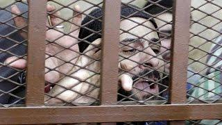 """Египет. Суд признал участников """"гей-оргии"""" невиновными"""