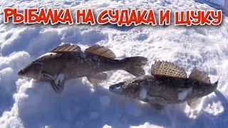 Ловля судака зимой. Ловля щуки. Зимняя жерлица.