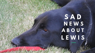 Sad News About Lewis