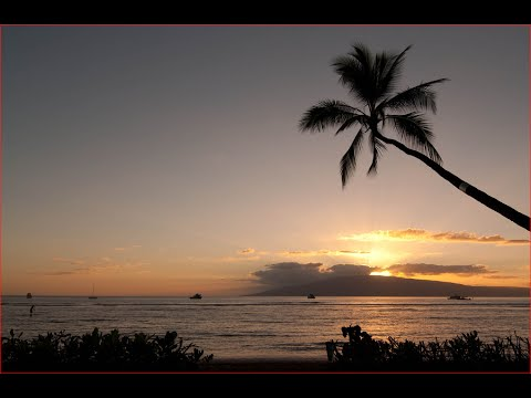 Visiting Lahaina,  West Maui, Maui County, Hawaii, United States