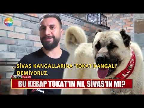 Bu kebap Tokat'ın mı, Sivas'ın mı?
