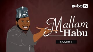 Dammy krane i wanna pop! -mallam habu cautions youths against  popping their destinies | pulse tv