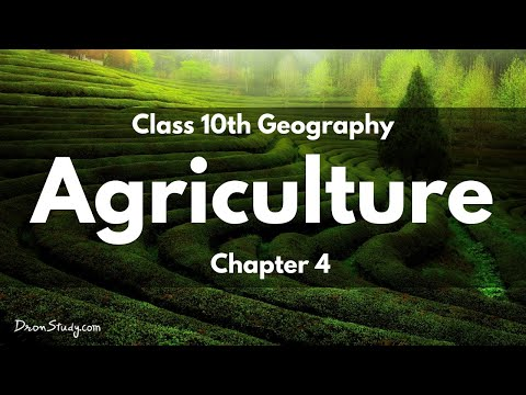 Agriculture: CBSE Class 10 X | Social Studies | Video Lecture