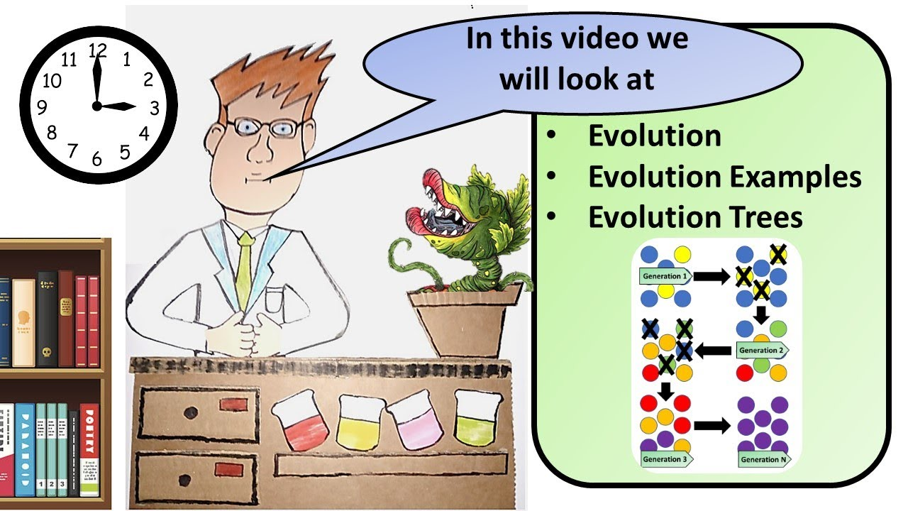 GCSE Biology Theory of Evolution Revision - YouTube