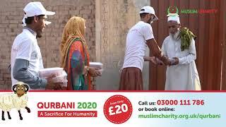 QURBANI 2020 | MuslimCharity.org.uk |  £20 QURBANI UK | SHARE HAPPINESS | ORDER NOW | | UDHIYA