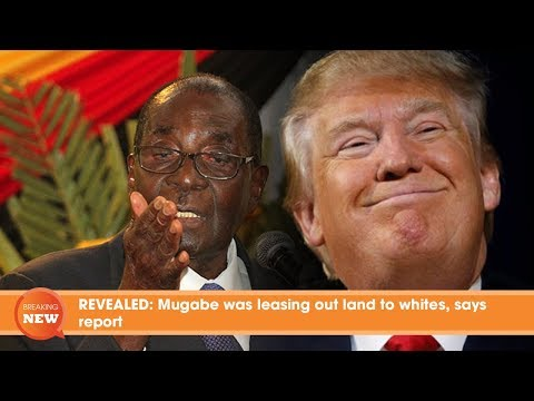 REVEALED: Mugabe was leasing out land to whites, says report