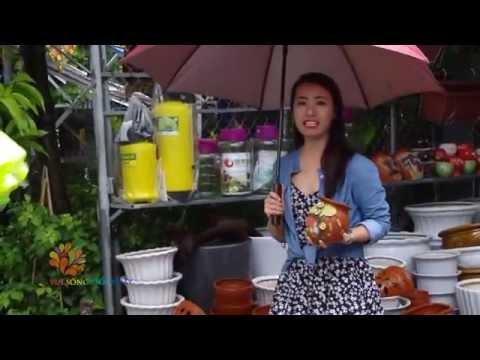 Khám phá chợ Hàng - phiên chợ cổ ở Hải Phòng - Vui Sống Mỗi Ngày [VTV3 – 13.07.2015]