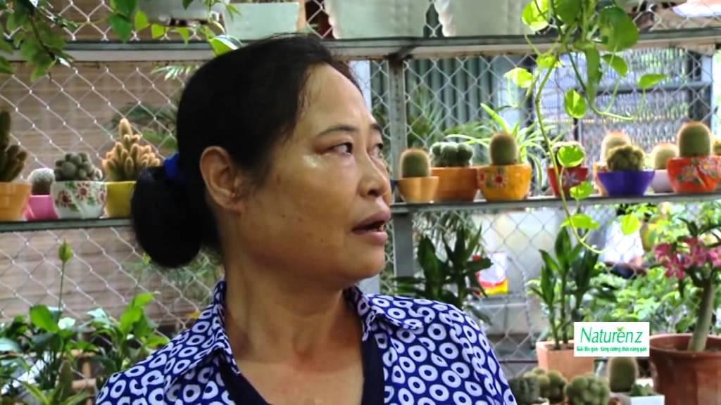 Khám phá chợ Hàng – phiên chợ cổ ở Hải Phòng – Vui Sống Mỗi Ngày [VTV3 – 13.07.2015]