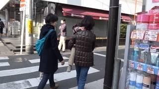 Seijo Walkabout - Setagaya 成城散策散歩 - 世田谷区 (130317)