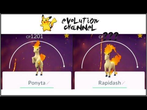 Huge 1800 Cp Rapidash Pokemon Go Ponyta 1200 Evolution Youtube