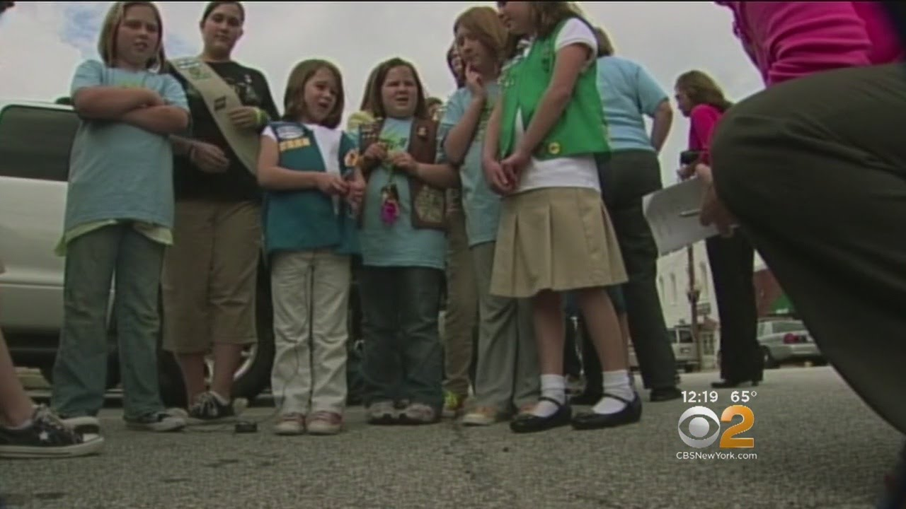 New Girl Scout Badges