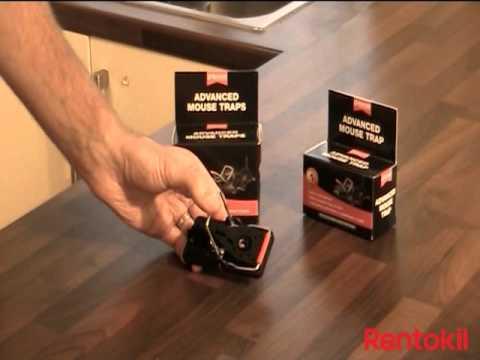 Rentokil FR51 Advanced Rat Trap Twin Pack
