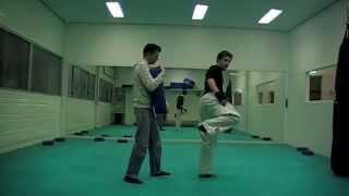 047-ushiro geri / back kick tutorial