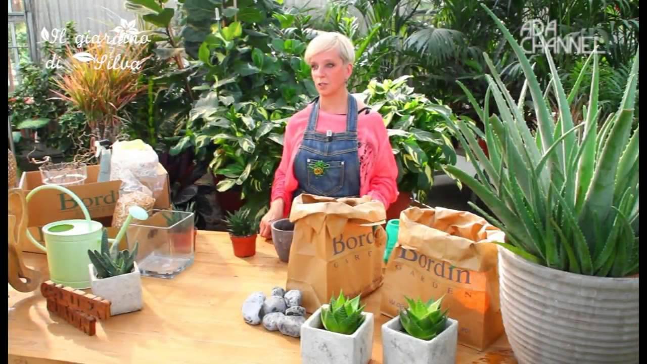 Aloe In Giardino il giardino di silva - puntata 7 - aloe