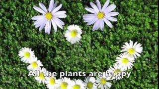 "Photosynthesis Song to the tune of ""Stitches"""