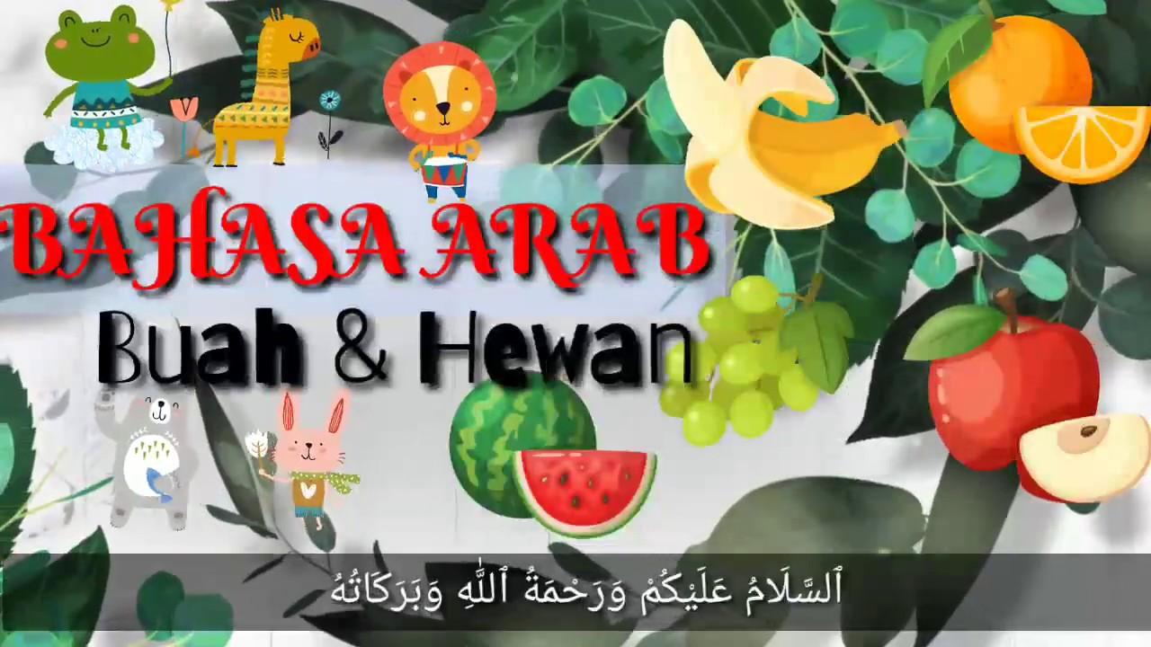 Bahasa Arab Untuk Anak (Buah dan Hewan) - YouTube