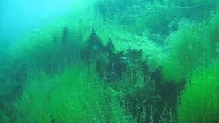 Scuba Diving at a Volcano