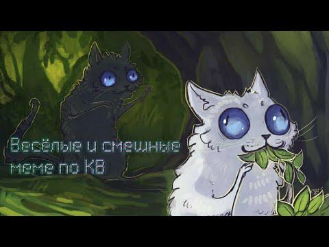 Коты-воители: ✨ сборник смешных и весёлых меме ✨