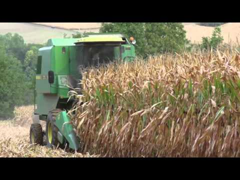Seeds of Death: Unveiling The Lies of GMO's Full Documentary HD