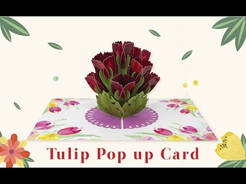 Paper Love Tulip Pop Up Greeting Card