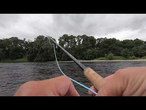 Salmon Fishing At Delvine  Burnbane On The River Tay 13th July 2020