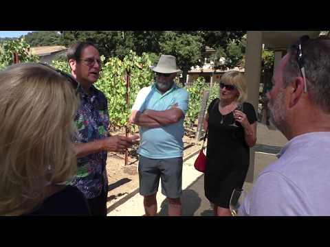 wine article Pine Ridge Vineyards 2019 Tour