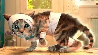Download ПРИКЛЮЧЕНИЯ КРОШКИ КОТЕНКА. Путешествуем с милым котиком в детской игре Mp3 and Videos