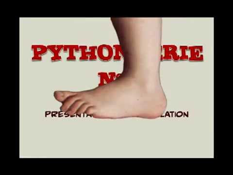 Partie n°1 cours initiation Python