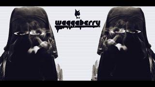 BÖ - Waqqaberry (1 HOUR) mp3