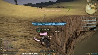 「Final Fantasy XIV」A Realm Reborn: Big Fishing – Olgoi-Khorkhoi (PS4)