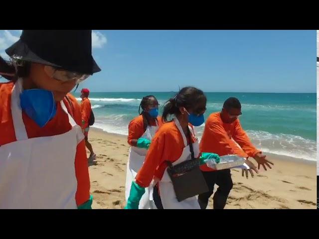 Sindipetro Bahia e categoria petroleira realizam limpeza de praia atingida por óleo em Salvador