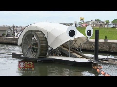 Students Feed Baltimore Trash Wheel Garbage Cake For Its Birthday
