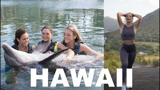 HAWAII VLOG: sunrise hike and swimming with dolphins!