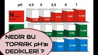 Toprak pH sı Nedir ? pH nasıl düşürülür ?