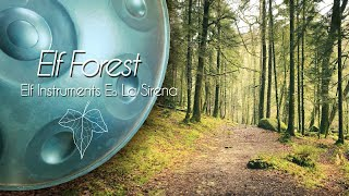Elf Forest - Thierry Bleton (Handpan)