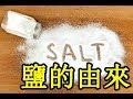 鹽的由來 The origin of salt