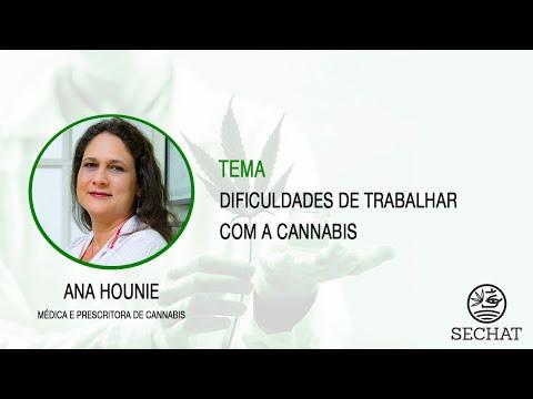 """""""Dificuldades de trabalhar com a Cannabis"""" - Com Ana Hounie"""
