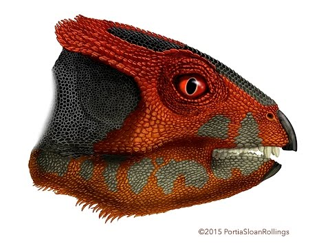 Researchers discover second oldest-known horned dinosaur species!
