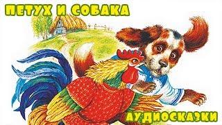 """Слушать русскую народную сказку """"Петух и Собака"""""""