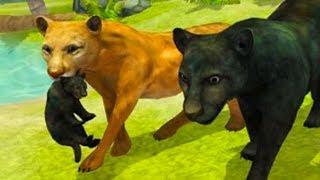 СИМУЛЯТОР ДИКОЙ КОШКИ #1 Родился котенок у пантеры /  Развлекательное видео для детей #ПУРУМЧАТА